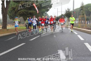 175617-photo-marathon-de-montpellier-2016